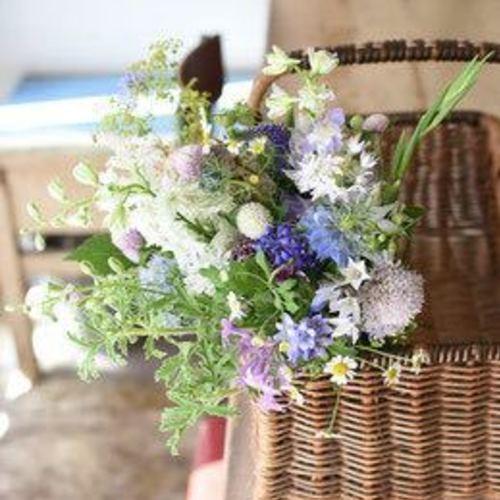 Special class**『初夏の庭から摘んできたような花束♪好きなのチョイス♪』