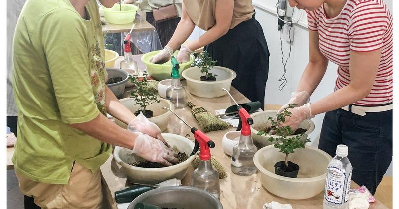 自分で作って楽しむ景色盆栽ワークショップ 初級編
