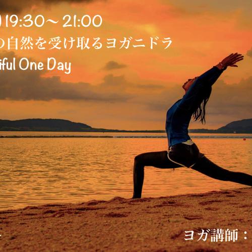 【特別企画】八重山の自然を受け取るヨガニドラ(Beautiful One Day)