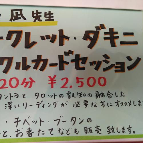 白石凪先生 シークレットダギニ オラクルカードセッション