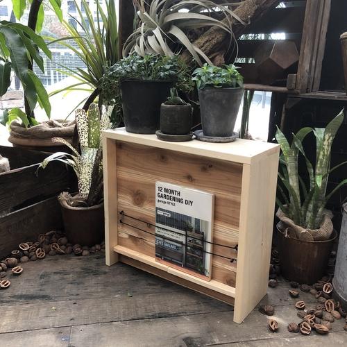 【名古屋店/2019.03.07】plants display rack