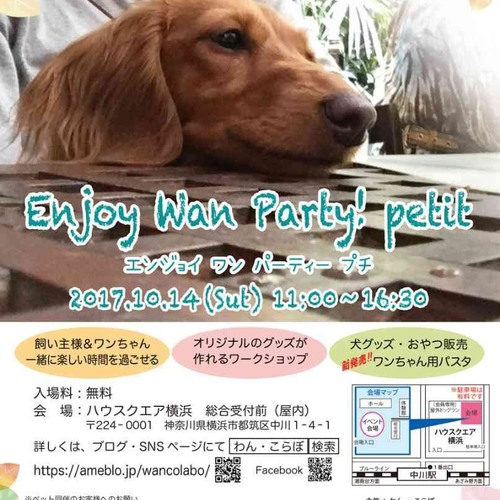 Enjoy Wan Party! petit