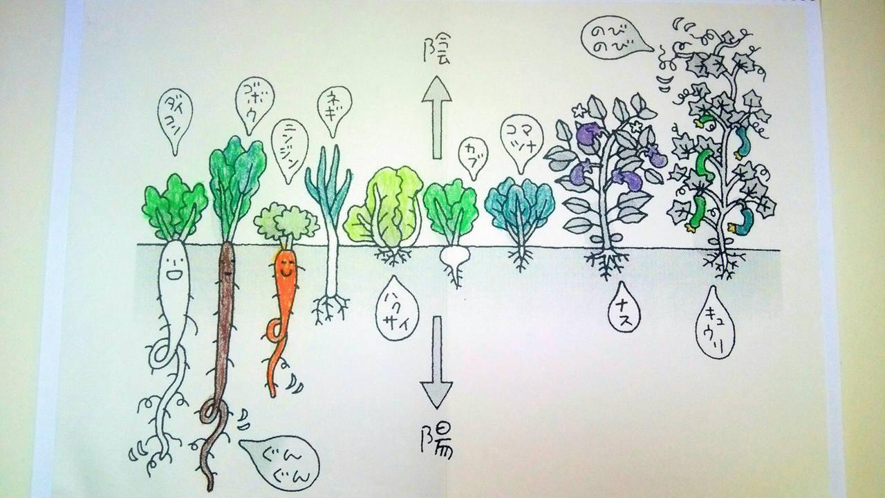 10/20「男」の重ね煮~お父さんのための陰陽調和料理~秋
