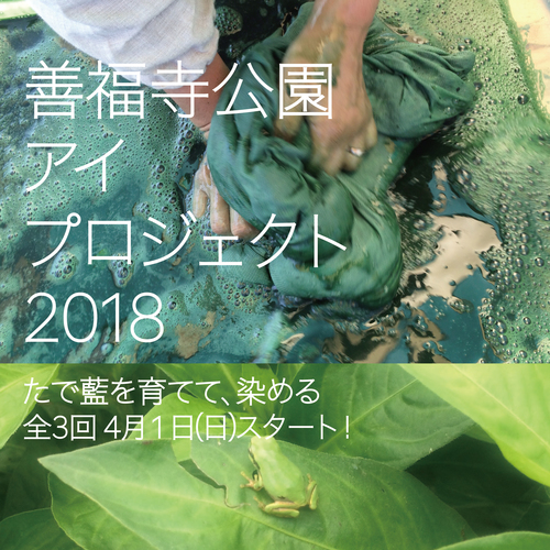 善福寺公園 アイ プロジェクト 2018 〜 たで藍を育てて、染める 全3回 !!!