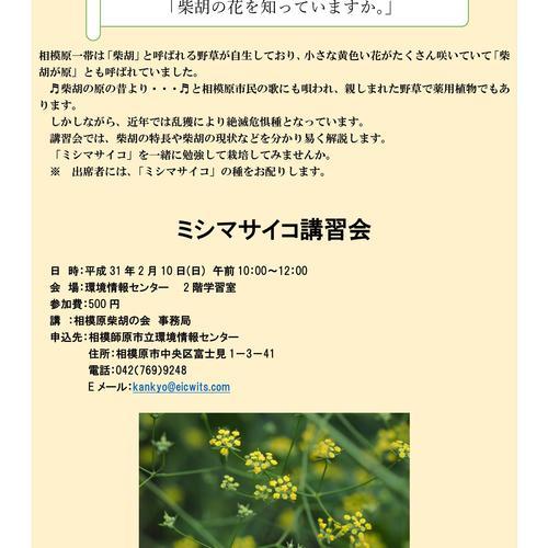 【ミシマサイコ講演会】~相模原市にゆかりの深い「柴胡の花を知っていますか。」~