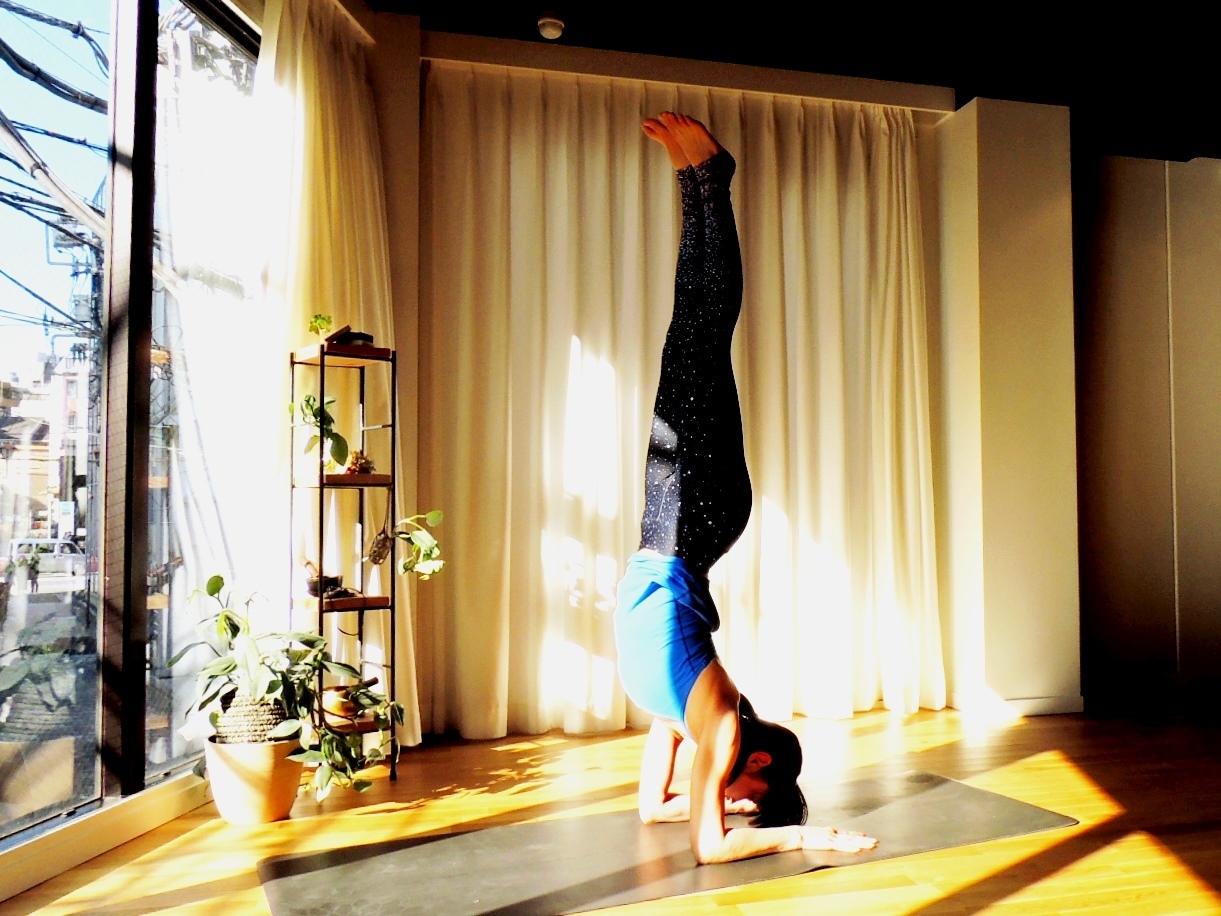 WS:はじめてのZuddha Yoga【7月】(10回券)
