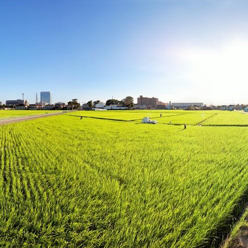 2019年 4月いづみ橋酒蔵見学ツアー【おつまみ付き】