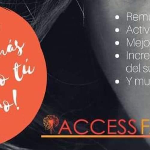 アクセス・フェイスリフト 講座 / Access FACELIFT Class