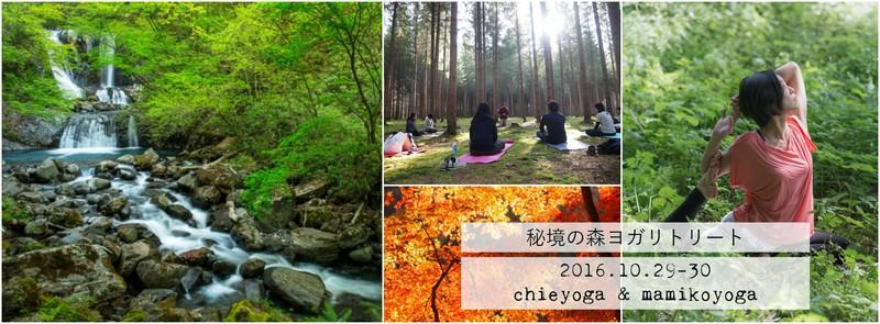 秘境の森ヨガリトリート〜樹齢300年の太古の森と滝の時間〜