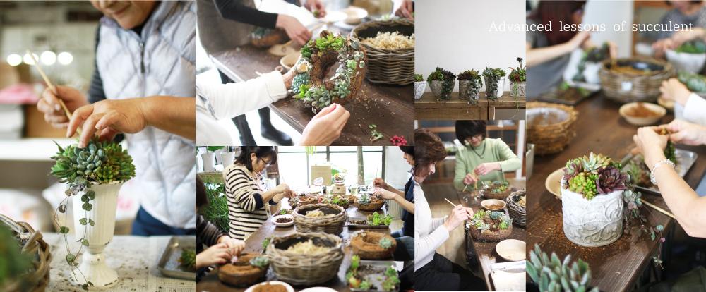 多肉植物寄せ植え教室
