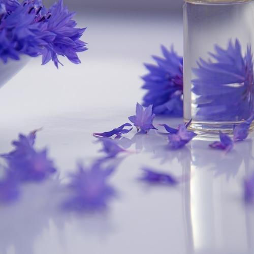 TEMPERO (テンペーロ) @comfetti flowers目白*ご予約はこちらからどう
