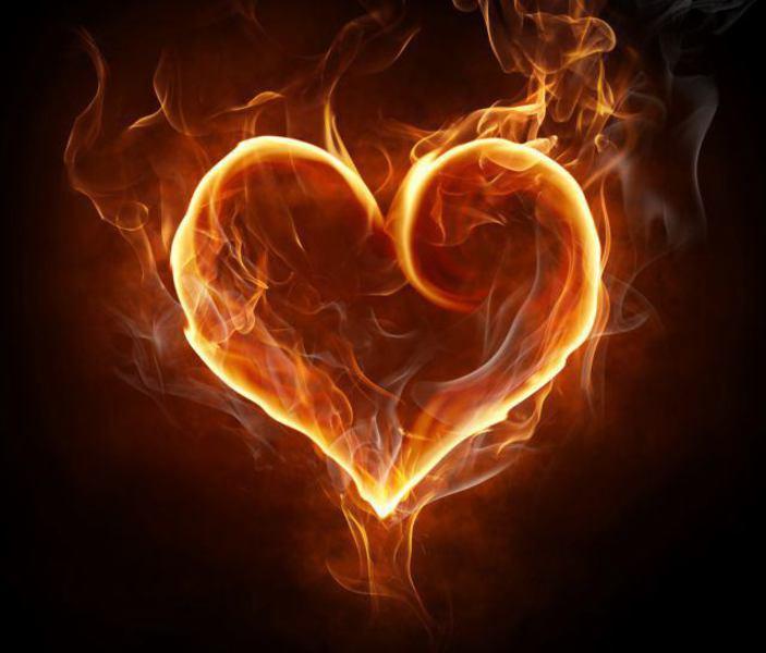 産科医熊谷歩さんの「Fire journey 体と燃ゆる火の話」心臓と腸まわり