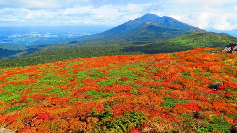 仙台お山塾 三ツ石山 ◎頂上からの紅葉は絶景