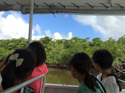 【2島めぐり】西表島仲間川・由布島