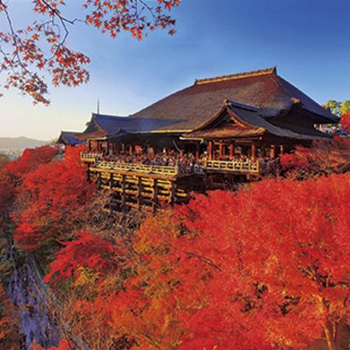 紅葉の京都と琵琶湖畔雄琴温泉