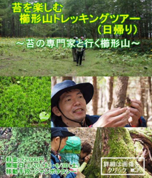 苔を楽しむ櫛形山トレッキングツアー(日帰り)