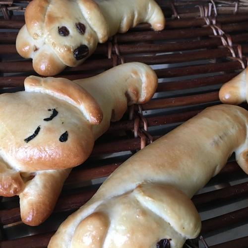 7月8月夏休みイベント「ドッグパン」