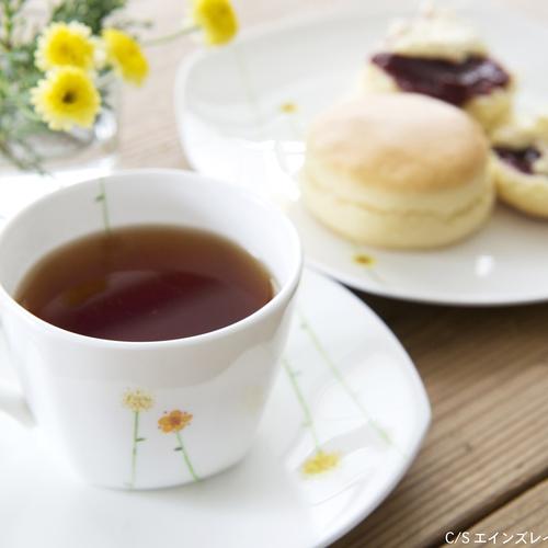 【表現の学校「おいしい紅茶の入れ方」6月10日(土)講師:伊藤葉子】