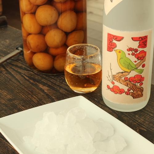 【本場の南高梅を使った梅酒作りと梅の酒宴を楽しむ日曜日(6/24開催)】