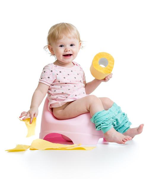 【1歳~3歳前後】今日から始めるトイレトレーニング