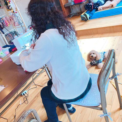 🔰犬服教室入門クラス【日時が選べるコース】
