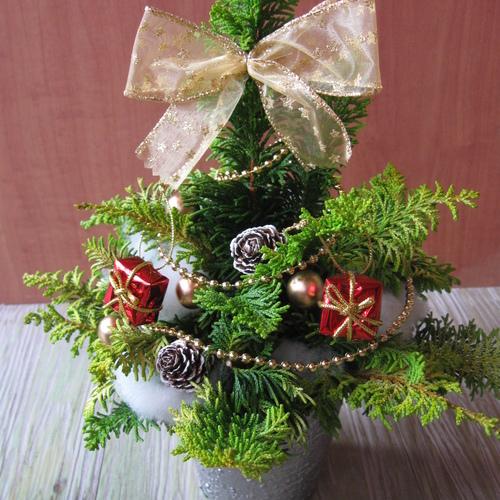 生の枝で作る!テーブルクリスマスツリー作り♬