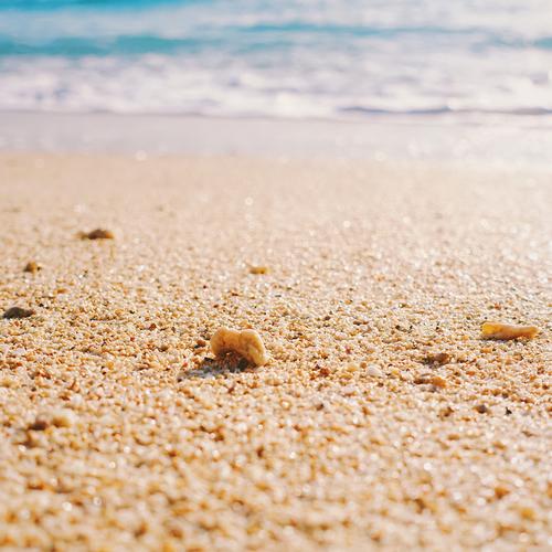Beach pilates_Flowクラス (※キャンセル待ち設定のサンプルページです)