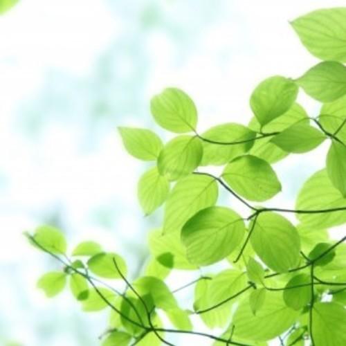 【イベント】無料瞑想会 からだも心も活性化する瞑想の習慣を付けましょう