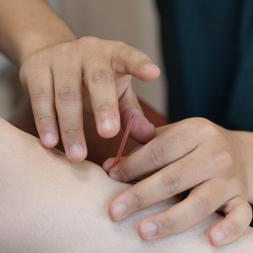パーソナル、個別グループトレーニング、鍼灸マッサージ治療、呼気ガス測定