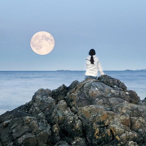 お月見ヨーガ