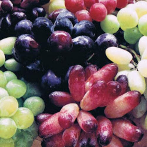 ブドウ食べ歩きツアー予約