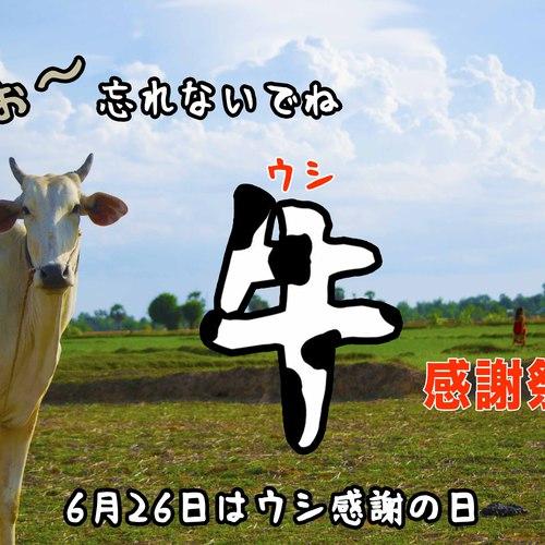 牛感謝祭!!