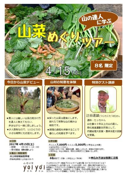 【4月15日(土)】山の達人に学ぶ『山菜めぐりツアー』