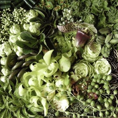 6/12【多肉植物と複雑に絡み合う色の花のパズル】 フラワーアーティスト TERRARIUM.1 横山さちこ