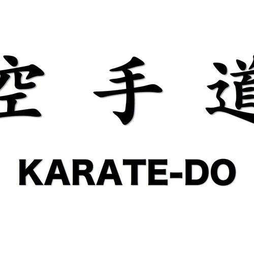Karate-do Experience