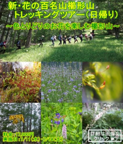 2018年度新・花の百名山 櫛形山トレッキングツアー(日帰り)