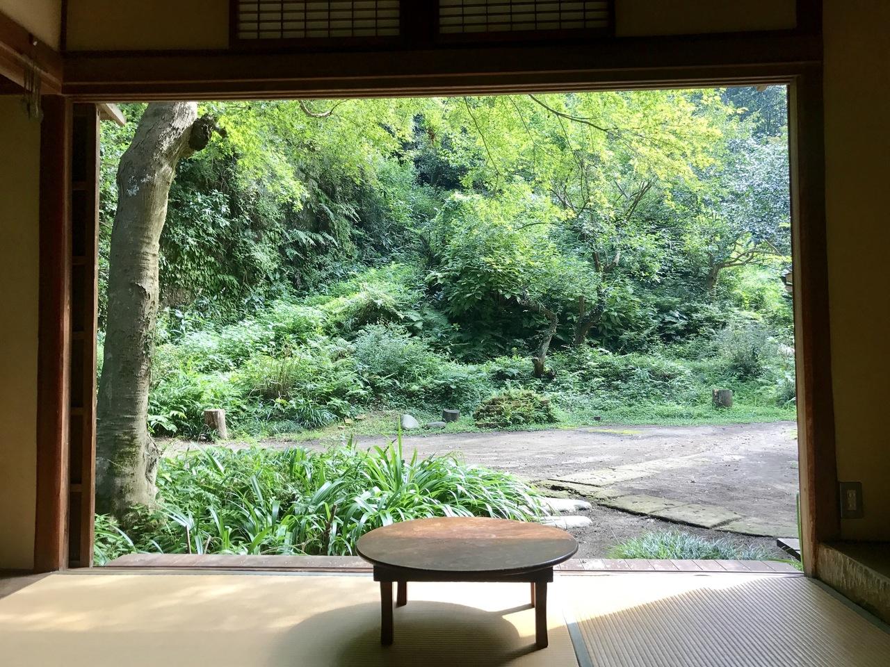 薬膳ヨガのティーチャートレーニング個別説明会(北鎌倉)