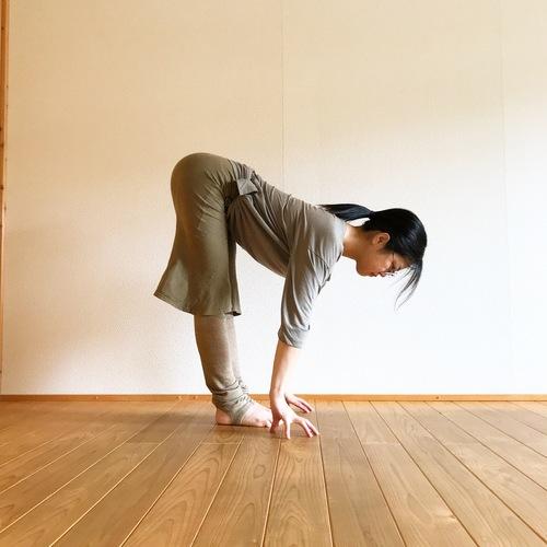 🔰⭐️ ハタヨガ(なおこ)