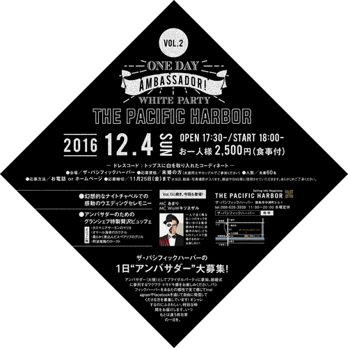 ONE DAY AMBASSADOR Vol.2 -ワン デイ アンバサダー-