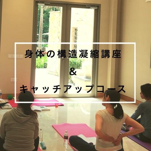 【8月21日開催決定!】身体の構造凝縮講座&キャッチアップコース