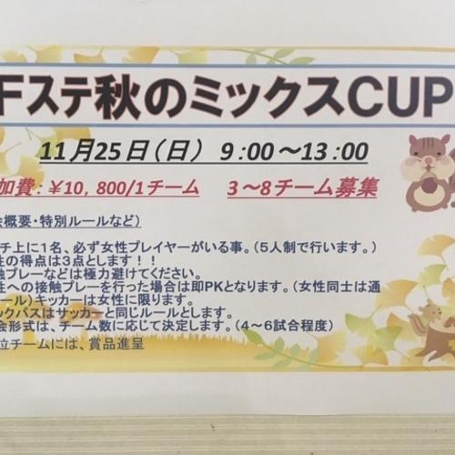 11/25 (日)「Fステ秋のミックスCUP」