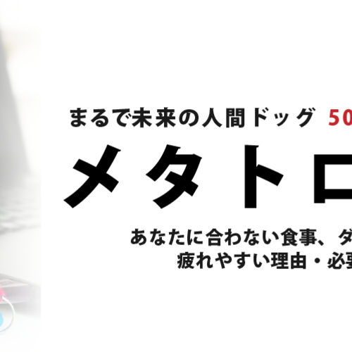 メタトロン波動測定 50分で分かる自分のカラダ 東京都神田