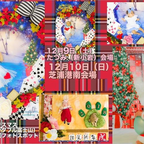 12月9日日曜日たつみ(新小岩)deクリスマス・年賀状おひるねアート撮影会