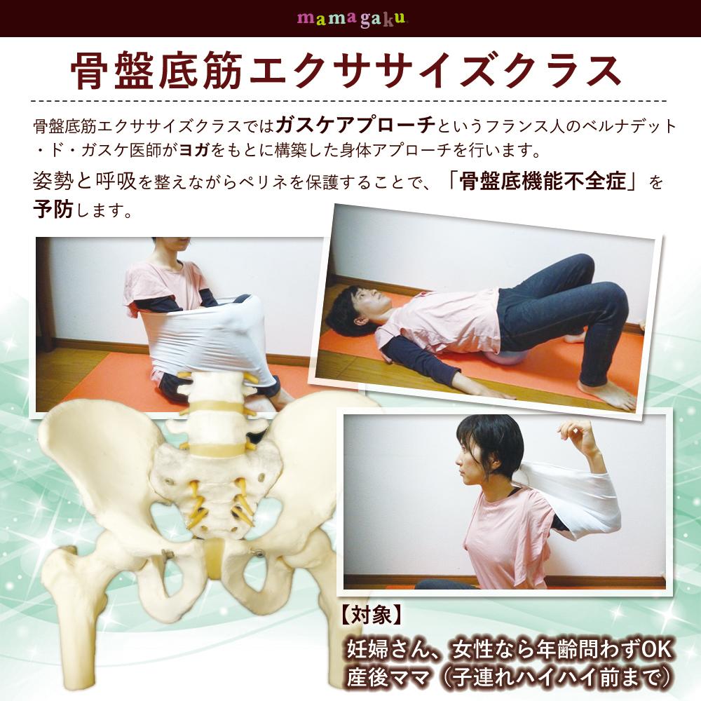 【妊娠中からすべての女性】骨盤底筋エクササイズ (女性のためのガスケアプローチ教室)