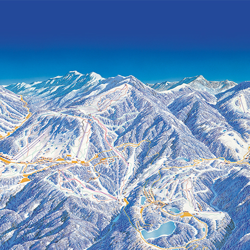 Piste guide and ski guidance of Shiga Kogen / 50,000JPY