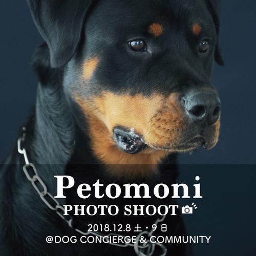 【DOG CONCIERGE & COMMUNITY】12月8日(土) ・9日(日) petomoni 撮影イベント