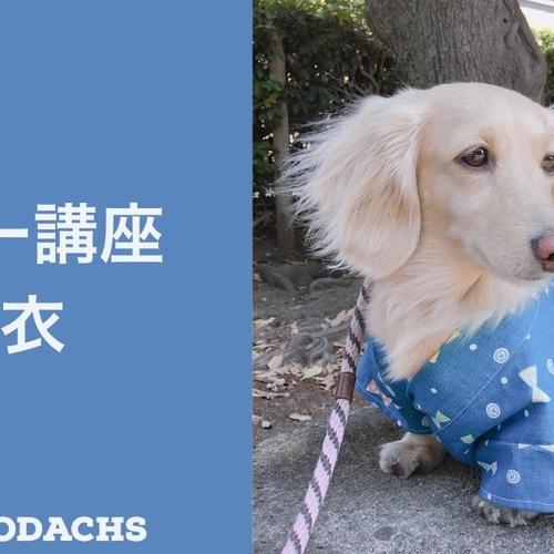 愛犬の浴衣を作ろう(1dayホビー講座) ★動物愛護支援対象レッスン
