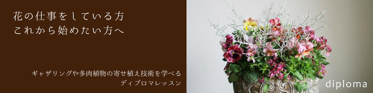 【福岡本店開催】Diplomaコース