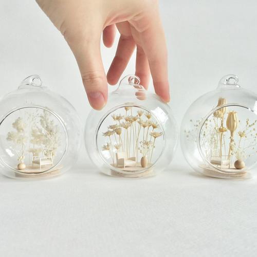【 KABOLO 】ガラスに収めるインドアリウムワークショップ〔 茅場町〕