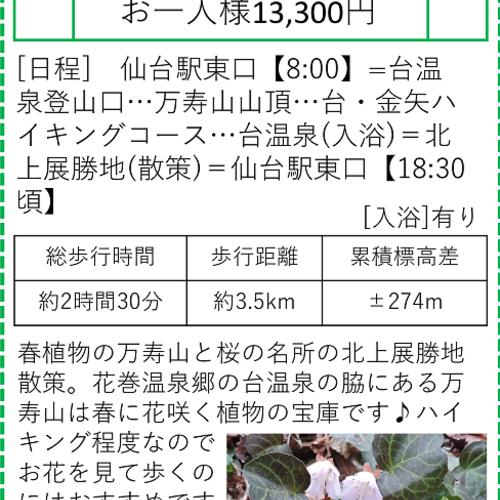 仙台お山塾 万寿山と北上展勝地 4月22日 ★出発決定★